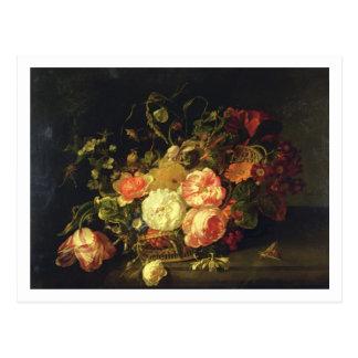 Flores e insectos, 1711 (aceite en el panel) tarjetas postales