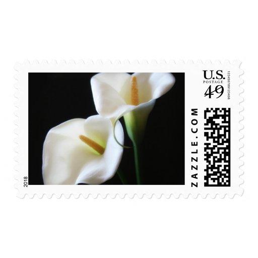 Flores elegantes 13 de la cala sellos