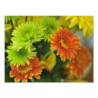 Flores en casa foto