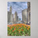 Flores en Chicago Posters