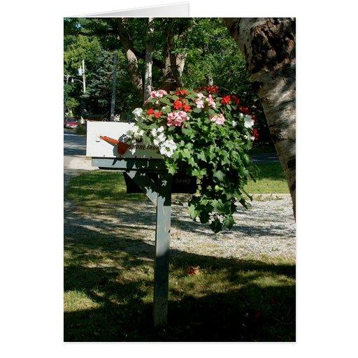 Flores en el correo tarjeta