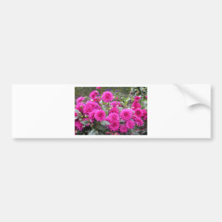Flores en el jardín de Monet Pegatina Para Auto
