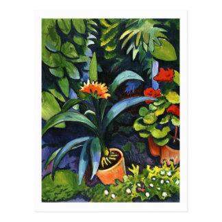Flores en el jardín en agosto Macke Tarjetas Postales