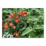 flores en el jardín tarjeton