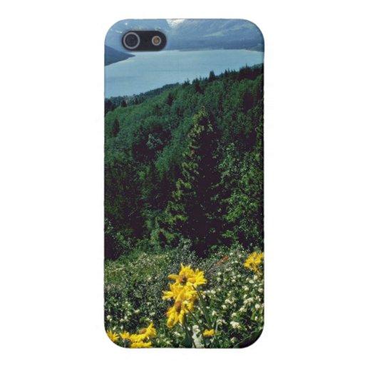 Flores en el lago dos medicine - PA nacional del g iPhone 5 Coberturas