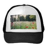 Flores en el parque gorra