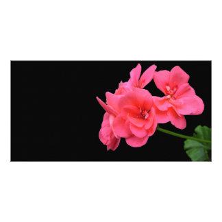 Flores en fondo negro tarjetas personales con fotos