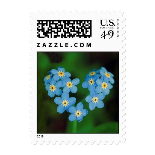Flores en forma de corazón de la nomeolvides sellos