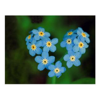 Flores en forma de corazón de la nomeolvides postales