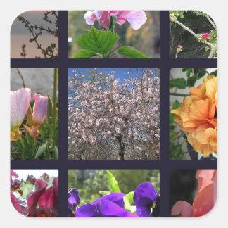 Flores en Israel Pegatina Cuadrada