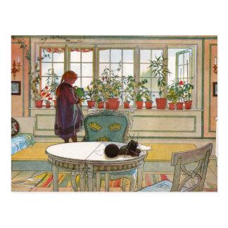 Flores en la caja de ventana - Blomsterforstet Tarjetas Postales