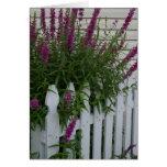 Flores en la cerca felicitaciones