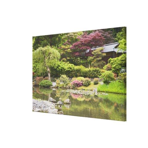 Flores en la floración en el jardín japonés, lona estirada galerías