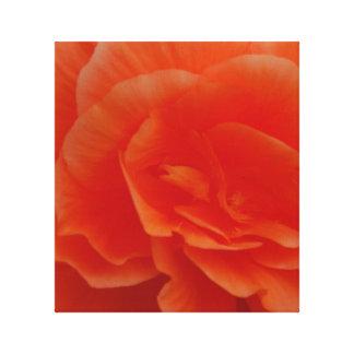 Flores en la floración impresiones de lienzo