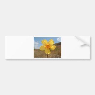 Flores en la primavera pegatina para auto