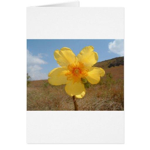 Flores en la primavera tarjeta de felicitación