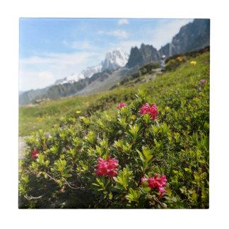 ¡Flores en las montañas - hermosas! Azulejo