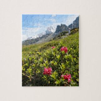 ¡Flores en las montañas - hermosas! Puzzles Con Fotos