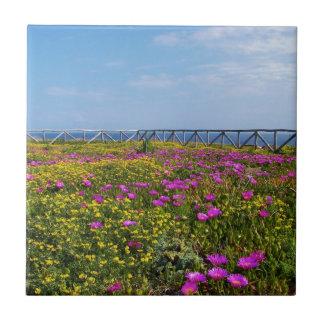 Flores en Pandateria. Azulejo Cuadrado Pequeño