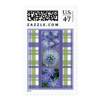 Flores en sello de la tela escocesa