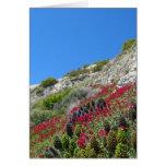 Flores en tarjeta de felicitación de la colina