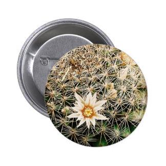 Flores en un cactus pin redondo de 2 pulgadas