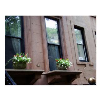 Flores en un windowsill postales