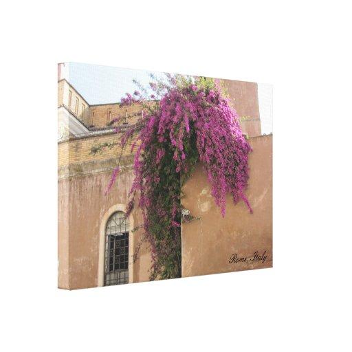 Flores en una pared en Roma, Italia Lona Estirada Galerias