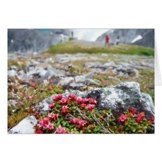 Flores entre rocas tarjeta de felicitación