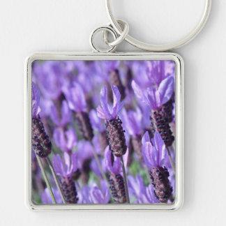 Flores españolas de la púrpura de la lavanda llavero cuadrado plateado