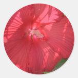flores etiquetas redondas