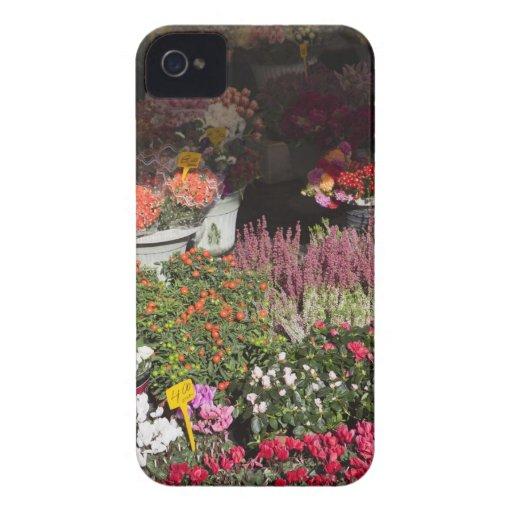 flores exhibidas para la venta en el de Campo Case-Mate iPhone 4 Protectores