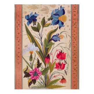 Flores exóticas con los insectos tarjetas postales