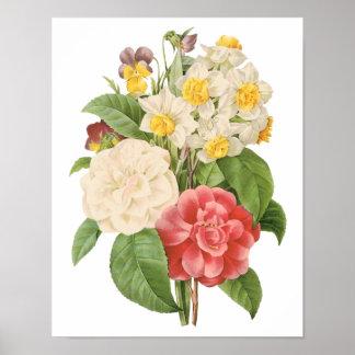 Flores florales del narciso de Camelia del vintage Póster