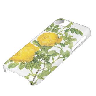 Flores florales del vintage, rosas amarillos por funda para iPhone 5C