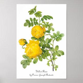 Flores florales del vintage, rosas amarillos por póster