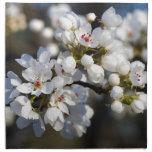 Flores florecientes de la pera de Bradford de la p Servilletas Imprimidas