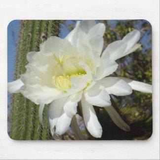 Flores florecientes del _Cacti_, _Mousepad. Alfombrillas De Ratón