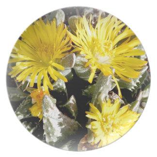 Flores florecientes del cactus amarillo plato de cena