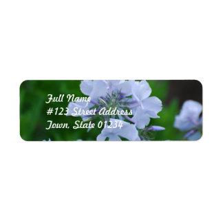 Flores florecientes del Phlox Etiqueta De Remite