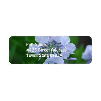 Flores florecientes del Phlox Etiquetas De Remite