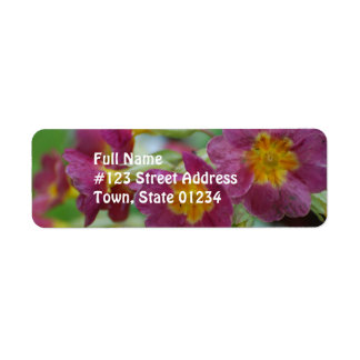 Flores florecientes del Primula Etiqueta De Remite