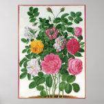 Flores florecientes del vintage, rosas del jardín póster