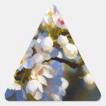 Flores florecientes pintados de la pera de Bradfor Calcomanía Trianguloada