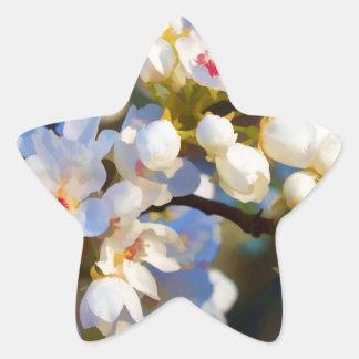 Flores florecientes pintados de la pera de pegatina en forma de estrella