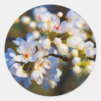 Flores florecientes pintados de la pera de pegatina redonda