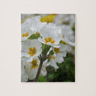 Flores florecientes puzzles