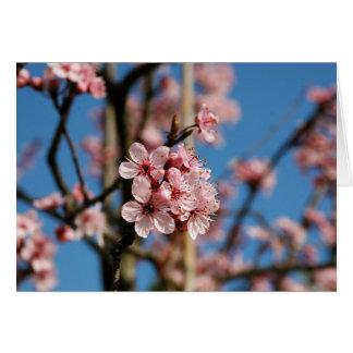 Flores florecientes tarjeta de felicitación