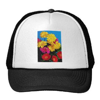 Flores, flores de las margaritas del Gerbera Gorras