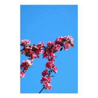 """Flores Folleto 5.5"""" X 8.5"""""""